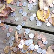 collection of coins with leaves around it